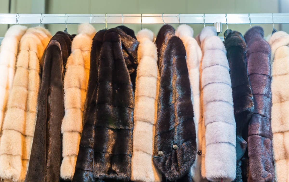 All You Need to Know About Fur Coats of Different Types 1